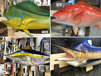Fish mounts, saltwater and freshwater fish replicas | Big